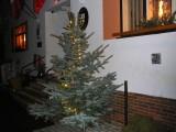 P1150529_-_Soutěž_o_nejhezčí_vánoční_strom_2011